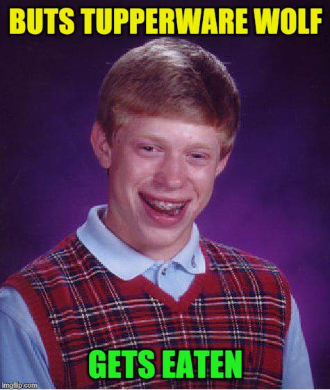 Bad Luck Brian Meme | BUTS TUPPERWARE WOLF GETS EATEN | image tagged in memes,bad luck brian | made w/ Imgflip meme maker
