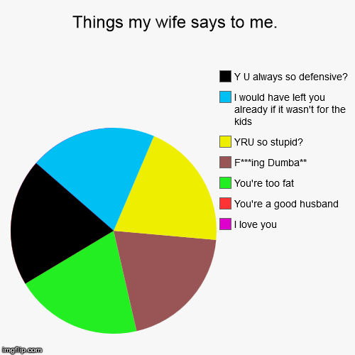 is it any wonder I fantasize about her driving off a bridge on her way to work? | Things my wife says to me. | I love you, You're a good husband, You're too fat, F***ing Dumba**, YRU so stupid?, I would have left you alrea | image tagged in funny,pie charts,domestic abuse | made w/ Imgflip pie chart maker
