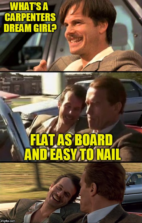 Bill Paxton Scummy Jokes  | WHAT'S A CARPENTERS DREAM GIRL? FLAT AS BOARD AND EASY TO NAIL | image tagged in bill paxton scummy jokes | made w/ Imgflip meme maker