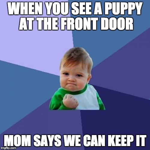 Success Kid Meme | WHEN YOU SEE A PUPPY AT THE FRONT DOOR MOM SAYS WE CAN KEEP IT | image tagged in memes,success kid | made w/ Imgflip meme maker