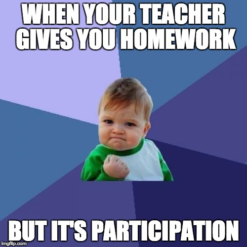 Success Kid Meme | WHEN YOUR TEACHER GIVES YOU HOMEWORK BUT IT'S PARTICIPATION | image tagged in memes,success kid | made w/ Imgflip meme maker