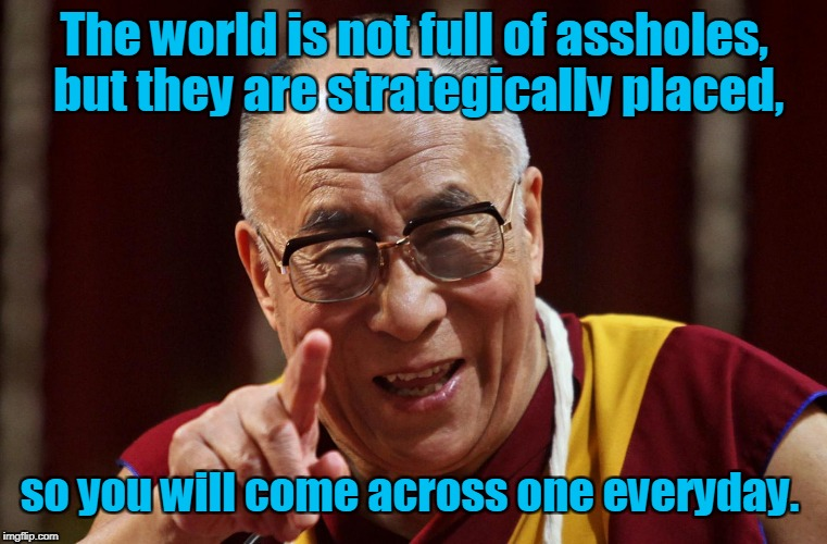 Dali Lama | The world is not full of assholes, but they are strategically placed, so you will come across one everyday. | image tagged in dali lama | made w/ Imgflip meme maker