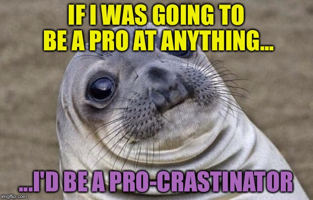 Awkward Moment Sealion Meme | IF I WAS GOING TO BE A PRO AT ANYTHING... ...I'D BE A PRO-CRASTINATOR | image tagged in memes,awkward moment sealion | made w/ Imgflip meme maker