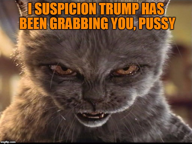 I SUSPICION TRUMP HAS BEEN GRABBING YOU, PUSSY | made w/ Imgflip meme maker