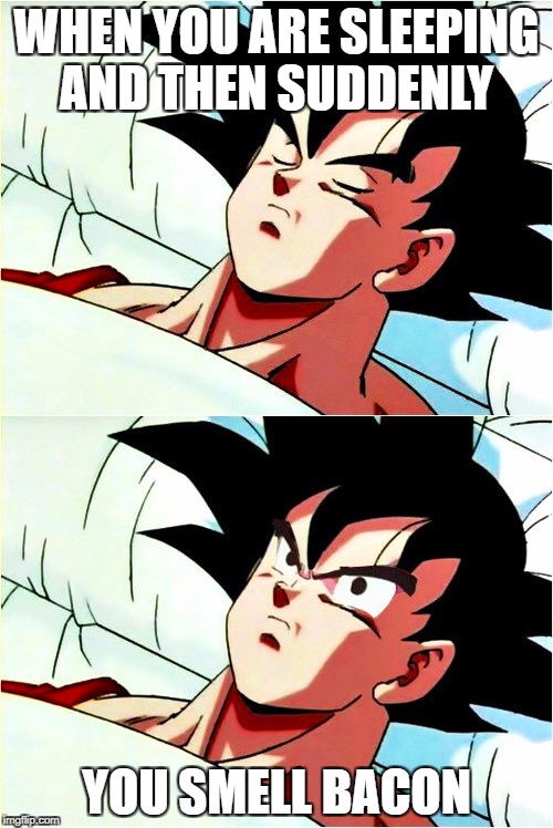 goku sleeping wake up | WHEN YOU ARE SLEEPING AND THEN SUDDENLY YOU SMELL BACON | image tagged in goku sleeping wake up | made w/ Imgflip meme maker