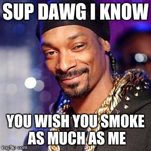 Snoop dogg | SUP DAWG I KNOW YOU WISH YOU SMOKE AS MUCH AS ME | image tagged in snoop dogg | made w/ Imgflip meme maker