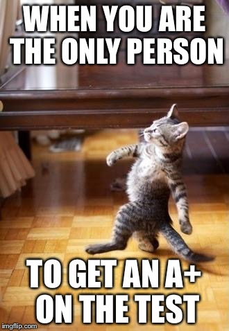 Cool Cat Stroll Meme | WHEN YOU ARE THE ONLY PERSON TO GET AN A+ ON THE TEST | image tagged in memes,cool cat stroll | made w/ Imgflip meme maker