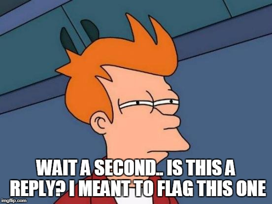 Futurama Fry Meme | WAIT A SECOND.. IS THIS A REPLY? I MEANT TO FLAG THIS ONE | image tagged in memes,futurama fry | made w/ Imgflip meme maker