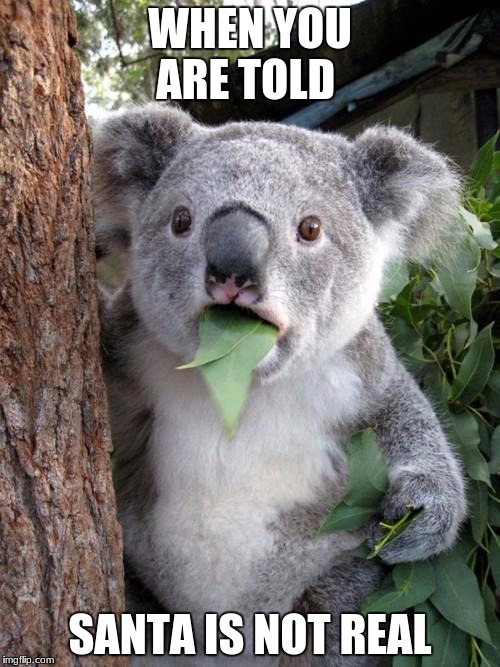 Surprised Koala Meme | WHEN YOU ARE TOLD SANTA IS NOT REAL | image tagged in memes,surprised koala | made w/ Imgflip meme maker