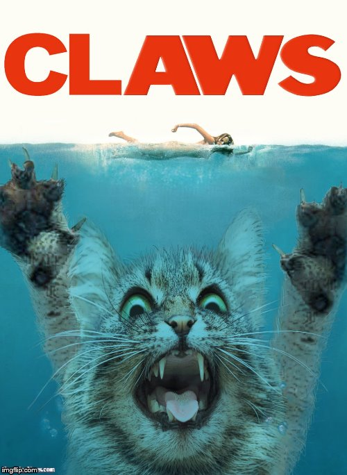 image tagged in claws | made w/ Imgflip meme maker