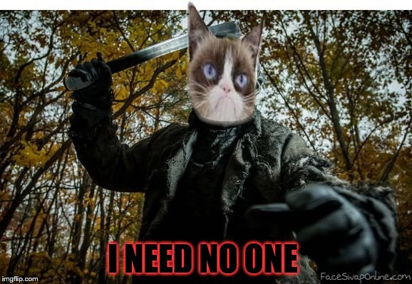 grumpy cat jason | I NEED NO ONE | image tagged in grumpy cat jason | made w/ Imgflip meme maker
