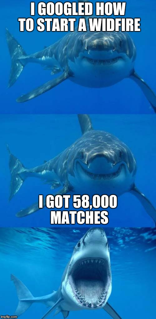 Bad Shark Pun  | I GOOGLED HOW TO START A WIDFIRE I GOT 58,000 MATCHES | image tagged in bad shark pun | made w/ Imgflip meme maker