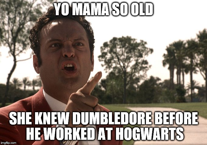 Yo mama | YO MAMA SO OLD SHE KNEW DUMBLEDORE BEFORE HE WORKED AT HOGWARTS | image tagged in yo mama | made w/ Imgflip meme maker