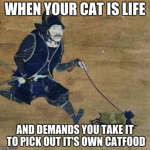 off to petsmartu | WHEN YOUR CAT IS LIFE AND DEMANDS YOU TAKE IT TO PICK OUT IT'S OWN CATFOOD | image tagged in justu walking my catu,memes,funny,cats,samurai | made w/ Imgflip meme maker