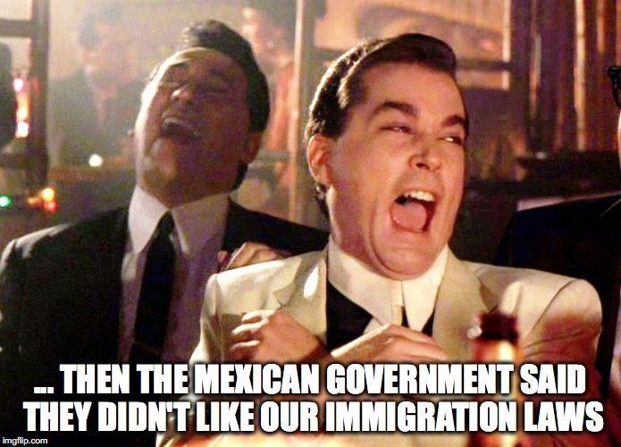 Good Fellas Hilarious Meme | ... THEN THE MEXICAN GOVERNMENT SAID THEY DIDN'T LIKE OUR IMMIGRATION LAWS | image tagged in memes,good fellas hilarious | made w/ Imgflip meme maker