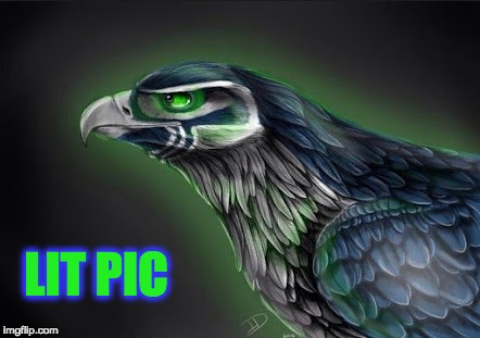 Sea Hawks Logo | LIT PIC | image tagged in seattle seahawks,seahawks,funny,nfl,nfl memes | made w/ Imgflip meme maker