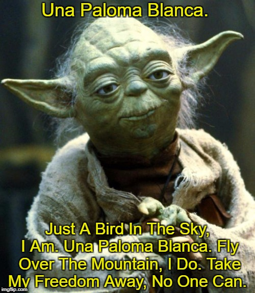 An Old Favorite, It Is | Una Paloma Blanca. Just A Bird In The Sky, I Am. Una Paloma Blanca. Fly Over The Mountain, I Do. Take My Freedom Away, No One Can. | image tagged in memes,star wars yoda,yoda lyrics,george baker,slim whitman | made w/ Imgflip meme maker