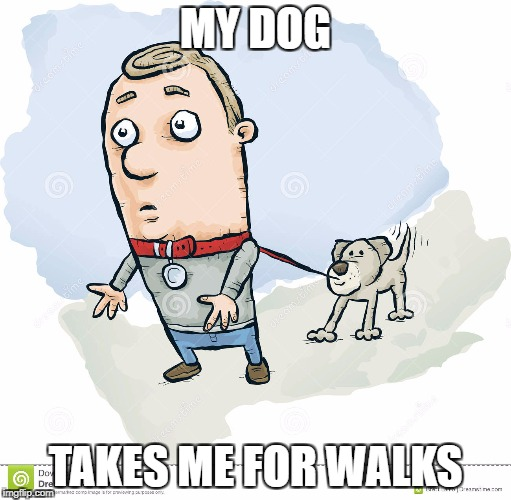 MY DOG TAKES ME FOR WALKS | made w/ Imgflip meme maker