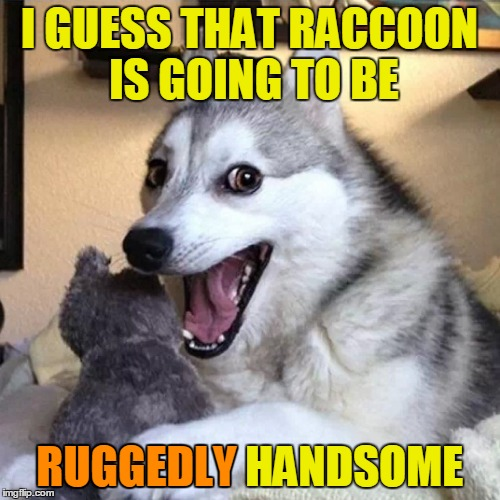 I GUESS THAT RACCOON IS GOING TO BE RUGGEDLY HANDSOME RUGGEDLY | made w/ Imgflip meme maker