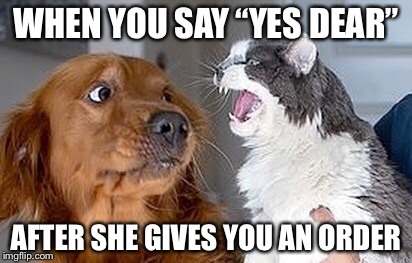 "Do Not Try This at Home | WHEN YOU SAY ""YES DEAR"" AFTER SHE GIVES YOU AN ORDER 