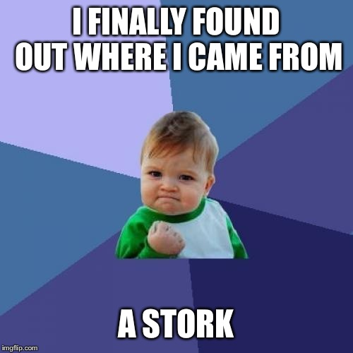 Success Kid Meme | I FINALLY FOUND OUT WHERE I CAME FROM A STORK | image tagged in memes,success kid | made w/ Imgflip meme maker
