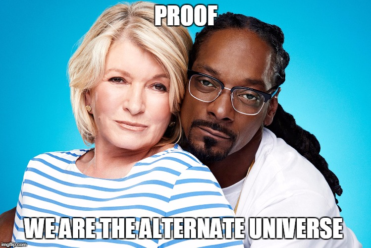 Proof We are The Alternate Universe | PROOF WE ARE THE ALTERNATE UNIVERSE | image tagged in proof we are the alternate universe | made w/ Imgflip meme maker