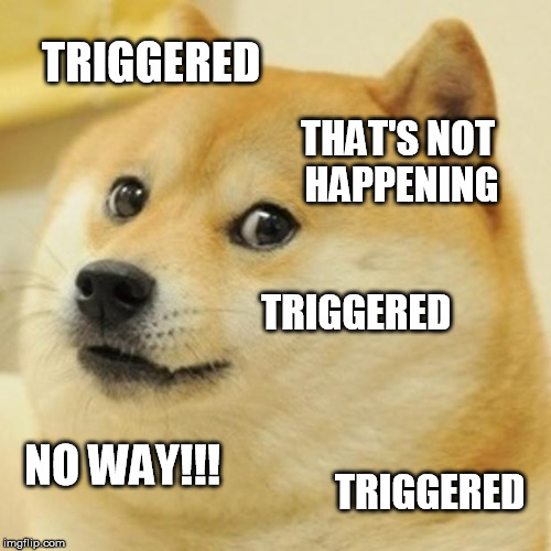Doge Meme | TRIGGERED THAT'S NOT HAPPENING TRIGGERED NO WAY!!! TRIGGERED | image tagged in memes,doge | made w/ Imgflip meme maker