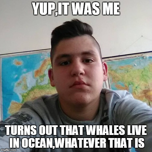 Stupid Student Stan | YUP,IT WAS ME TURNS OUT THAT WHALES LIVE IN OCEAN,WHATEVER THAT IS | image tagged in stupid student stan | made w/ Imgflip meme maker