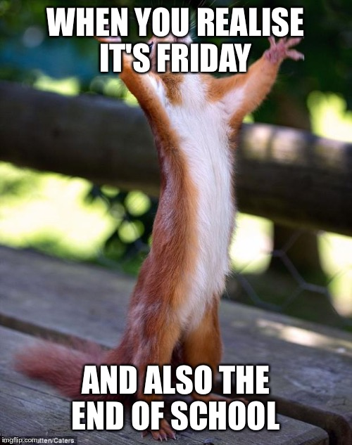Praying Squirrel | WHEN YOU REALISE IT'S FRIDAY AND ALSO THE END OF SCHOOL | image tagged in praying squirrel | made w/ Imgflip meme maker