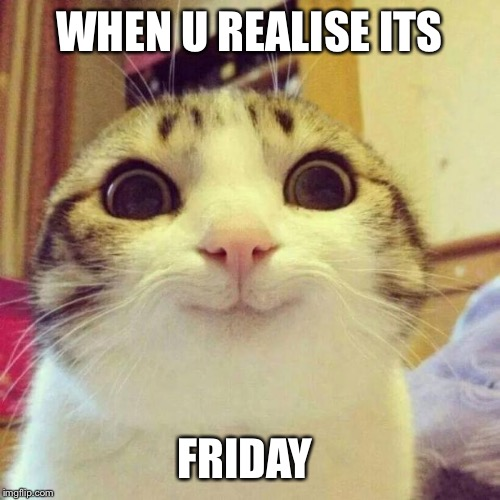 Smiling Cat Meme | WHEN U REALISE ITS FRIDAY | image tagged in memes,smiling cat | made w/ Imgflip meme maker