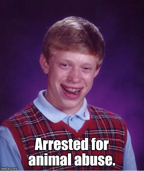 Bad Luck Brian Meme | Arrested for animal abuse. | image tagged in memes,bad luck brian | made w/ Imgflip meme maker