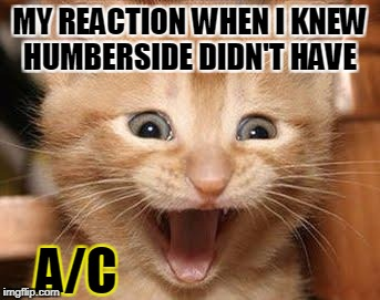 Excited Cat Meme | MY REACTION WHEN I KNEW HUMBERSIDE DIDN'T HAVE A/C | image tagged in memes,excited cat | made w/ Imgflip meme maker