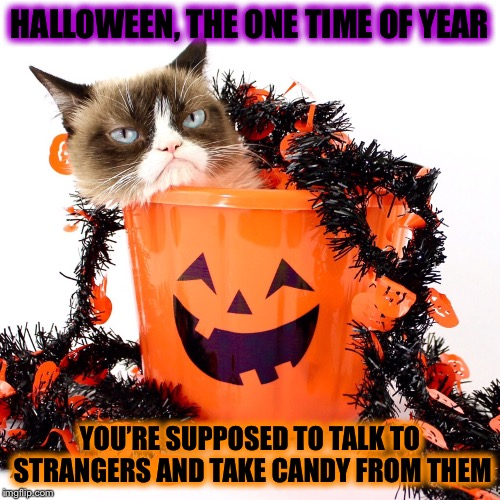 Like taking candy from a stranger! | HALLOWEEN, THE ONE TIME OF YEAR YOU'RE SUPPOSED TO TALK TO STRANGERS AND TAKE CANDY FROM THEM | image tagged in grumpy cat halloween,talk to strangers,take candy from strangers,go to the rich neighborhoids,its harder to tell the level 3s th | made w/ Imgflip meme maker