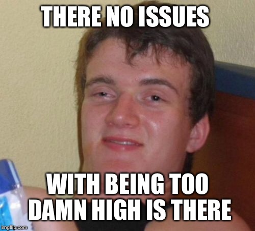 10 Guy Meme | THERE NO ISSUES WITH BEING TOO DAMN HIGH IS THERE | image tagged in memes,10 guy | made w/ Imgflip meme maker