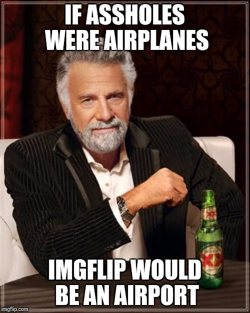 The Most Interesting Man In The World Meme | IF ASSHOLES WERE AIRPLANES IMGFLIP WOULD BE AN AIRPORT | image tagged in memes,the most interesting man in the world | made w/ Imgflip meme maker