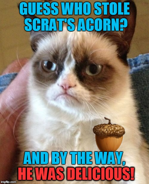 Ice Age Week - A Jesus_Milk event, October 24-30. | GUESS WHO STOLE SCRAT'S ACORN? AND BY THE WAY, HE WAS DELICIOUS! HE WAS DELICIOUS! | image tagged in memes,grumpy cat,ice age week,ice age,scrat,jesus_milk | made w/ Imgflip meme maker