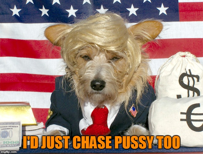 I'D JUST CHASE PUSSY TOO | made w/ Imgflip meme maker