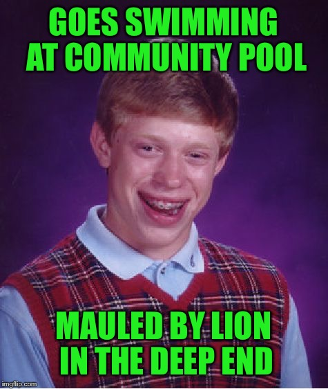 Bad Luck Brian Meme | GOES SWIMMING AT COMMUNITY POOL MAULED BY LION IN THE DEEP END | image tagged in memes,bad luck brian | made w/ Imgflip meme maker