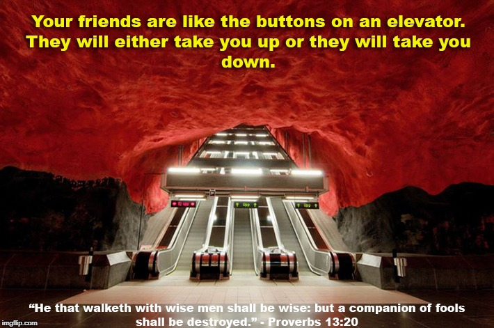Friends: Choose Wisely | image tagged in proverbs 1320,wise,choose friends,companion of fools,elevator hell | made w/ Imgflip meme maker