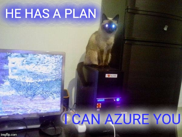 Internet Cat | HE HAS A PLAN I CAN AZURE YOU | image tagged in internet cat | made w/ Imgflip meme maker
