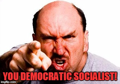 YOU DEMOCRATIC SOCIALIST! | made w/ Imgflip meme maker