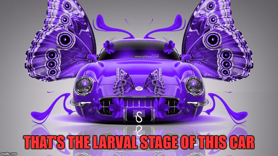 THAT'S THE LARVAL STAGE OF THIS CAR | made w/ Imgflip meme maker