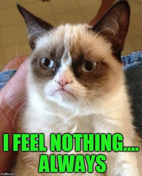 Grumpy Cat Meme | I FEEL NOTHING.... ALWAYS | image tagged in memes,grumpy cat | made w/ Imgflip meme maker
