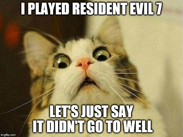 Scared Cat Meme | I PLAYED RESIDENT EVIL 7 LET'S JUST SAY IT DIDN'T GO TO WELL | image tagged in memes,scared cat | made w/ Imgflip meme maker