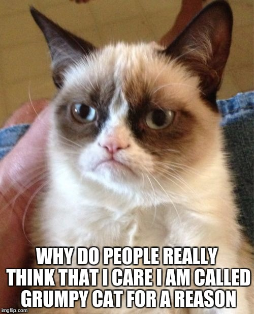 Grumpy Cat Meme | WHY DO PEOPLE REALLY THINK THAT I CARE I AM CALLED GRUMPY CAT FOR A REASON | image tagged in memes,grumpy cat | made w/ Imgflip meme maker
