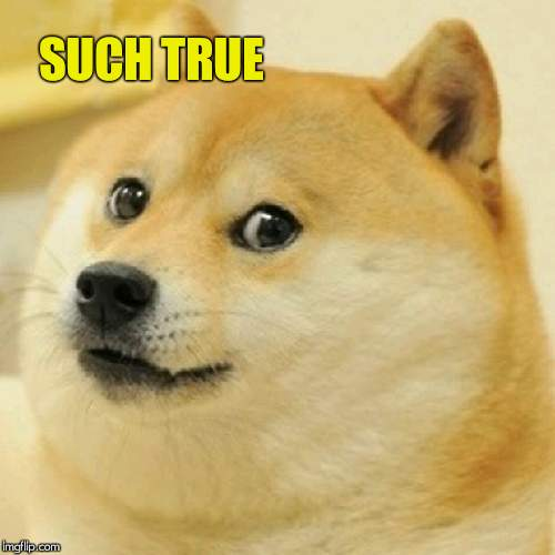 Doge Meme | SUCH TRUE | image tagged in memes,doge | made w/ Imgflip meme maker