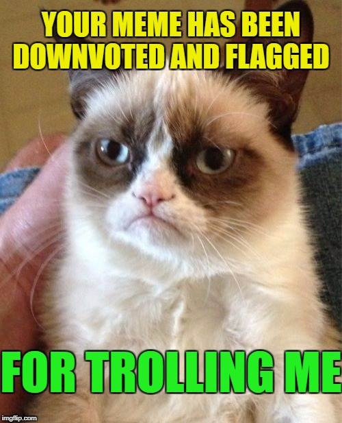 Grumpy Cat Meme | YOUR MEME HAS BEEN DOWNVOTED AND FLAGGED FOR TROLLING ME | image tagged in memes,grumpy cat | made w/ Imgflip meme maker