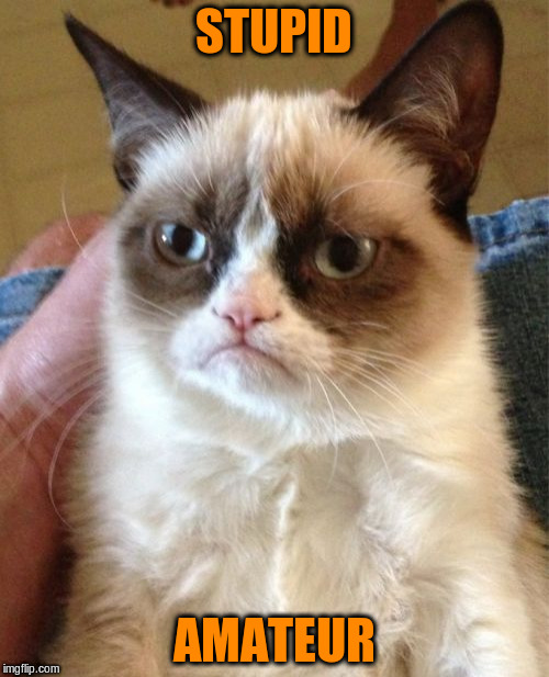 Grumpy Cat Meme | STUPID AMATEUR | image tagged in memes,grumpy cat | made w/ Imgflip meme maker