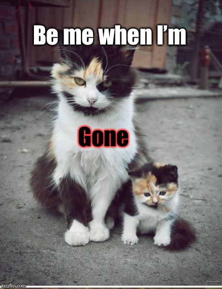 Be me when I'm gone. | Be me when I'm Gone | image tagged in be me when im gone | made w/ Imgflip meme maker