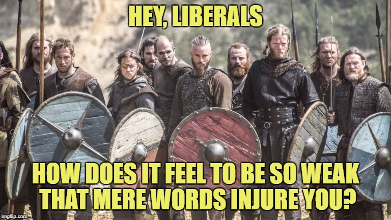 Ponder this in Mommy's basement | HEY, LIBERALS HOW DOES IT FEEL TO BE SO WEAK THAT MERE WORDS INJURE YOU? | image tagged in memes,liberals,politics,political meme | made w/ Imgflip meme maker
